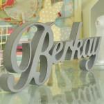 berkay (2)