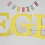 ege (6)