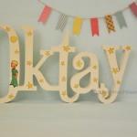 oktay (2)