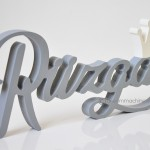 ruzgar (4)